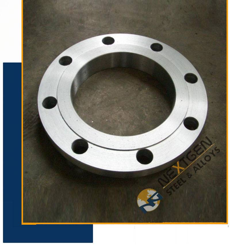 Plate Flanges Supplier