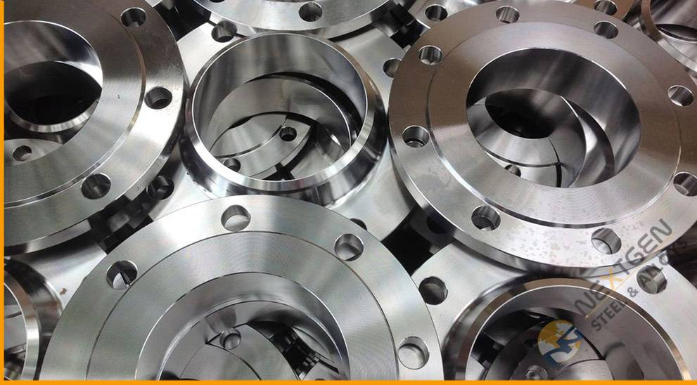 SS 446 Flanges
